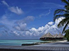 Urlaub auf den Malediven - Tipps für eine unvergessliche Reise